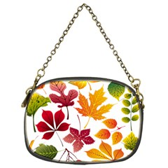 Beautiful Autumn Leaves Vector Chain Purses (one Side)  by Nexatart