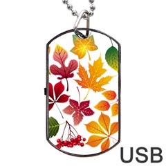 Beautiful Autumn Leaves Vector Dog Tag Usb Flash (two Sides) by Nexatart