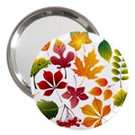 Beautiful Autumn Leaves Vector 3  Handbag Mirrors Front