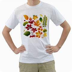 Beautiful Autumn Leaves Vector Men s T Shirt (white)