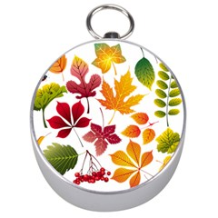 Beautiful Autumn Leaves Vector Silver Compasses by Nexatart