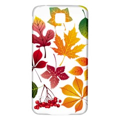 Beautiful Autumn Leaves Vector Samsung Galaxy S5 Back Case (white) by Nexatart