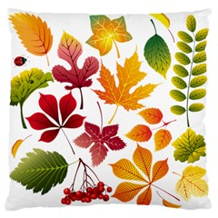 Beautiful Autumn Leaves Vector Large Flano Cushion Case (two Sides)