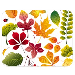 Beautiful Autumn Leaves Vector Double Sided Flano Blanket (medium)  by Nexatart