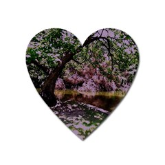 Old Tree 6 Heart Magnet by bestdesignintheworld