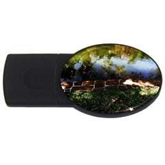 Highland Park 10 Usb Flash Drive Oval (2 Gb)