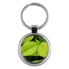 Leaf Green Foliage Green Leaves Key Chains (round)  by Simbadda
