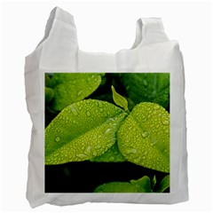 Leaf Green Foliage Green Leaves Recycle Bag (two Side)