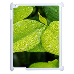 Leaf Green Foliage Green Leaves Apple Ipad 2 Case (white) by Simbadda