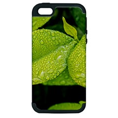 Leaf Green Foliage Green Leaves Apple Iphone 5 Hardshell Case (pc+silicone)