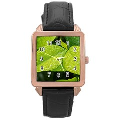 Leaf Green Foliage Green Leaves Rose Gold Leather Watch