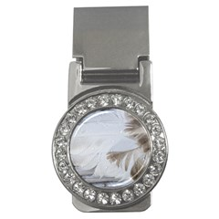 Feather Brown Gray White Natural Photography Elegant Money Clips (cz)  by yoursparklingshop