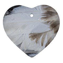 Feather Brown Gray White Natural Photography Elegant Heart Ornament (two Sides) by yoursparklingshop