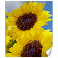 Sunflower Floral Yellow Blue Sky Flowers Photography Canvas 8  X 10  by yoursparklingshop