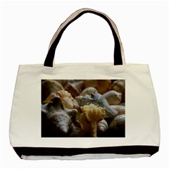 Seashells Basic Tote Bag (two Sides) by StarvingArtisan