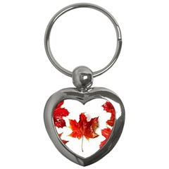 Innovative Key Chains (heart)