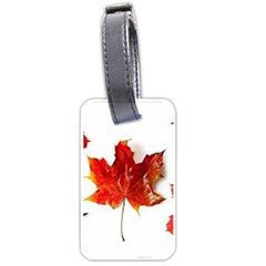 Innovative Luggage Tags (one Side)  by GlobidaDesigns