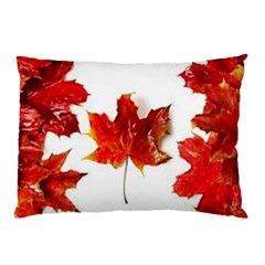 Innovative Pillow Case (two Sides) by GlobidaDesigns
