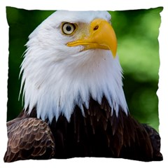 Bald Eagle Large Cushion Case (two Sides) by goodart