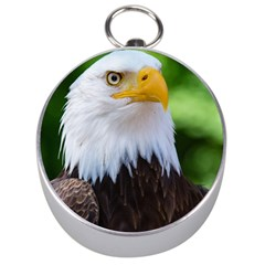 Bald Eagle Silver Compasses by goodart