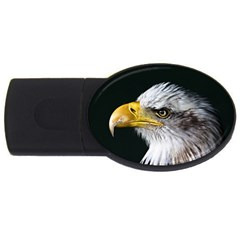 Bald Eagle Portrait  Usb Flash Drive Oval (4 Gb) by goodart