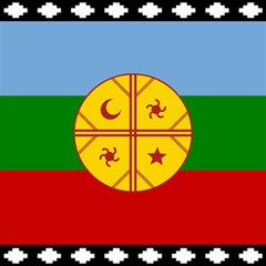 Flag Of The Mapuche People Canvas 20  X 20   by abbeyz71
