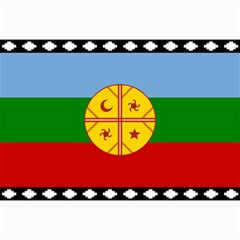 Flag Of The Mapuche People Canvas 24  X 36  by abbeyz71