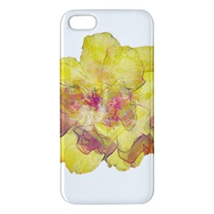 Yellow Rose Iphone 5s/ Se Premium Hardshell Case by aumaraspiritart