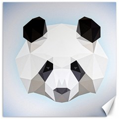 Background Show Graphic Art Panda Canvas 20  X 20