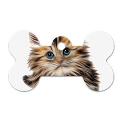Kitten Mammal Animal Young Cat Dog Tag Bone (two Sides)