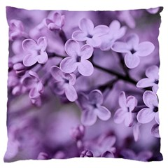 Lilac Standard Flano Cushion Case (two Sides) by LoolyElzayat