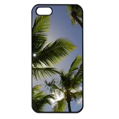 Palm Trees Tropical Beach Scenes Coastal   Apple Iphone 5 Seamless Case (black) by CrypticFragmentsColors