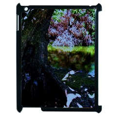 Hot Day In Dallas 32 Apple Ipad 2 Case (black) by bestdesignintheworld