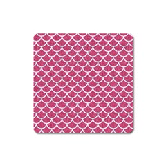 Scales1 White Marble & Pink Denim Square Magnet by trendistuff