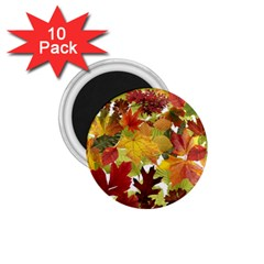 Autumn Fall Leaves 1 75  Magnets (10 Pack)  by LoolyElzayat