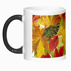 Autumn Fall Leaves Morph Mugs by LoolyElzayat