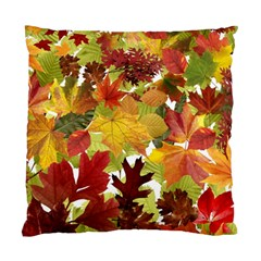 Autumn Fall Leaves Standard Cushion Case (two Sides) by LoolyElzayat