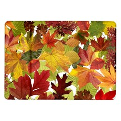 Autumn Fall Leaves Samsung Galaxy Tab 10 1  P7500 Flip Case
