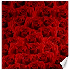 Romantic Red Rose Canvas 12  X 12
