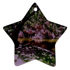 Hot Day In Dallas 31 Star Ornament (two Sides) by bestdesignintheworld
