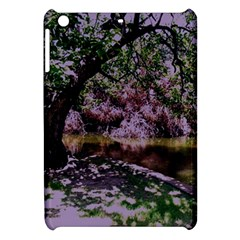 Hot Day In Dallas 31 Apple Ipad Mini Hardshell Case