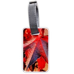 Wine Partner Wild Vine Leaves Plant Luggage Tags (one Side)  by Sapixe