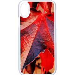 Wine Partner Wild Vine Leaves Plant Apple Iphone X Seamless Case (white)