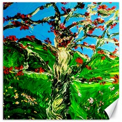 Coral Tree 2 Canvas 16  X 16