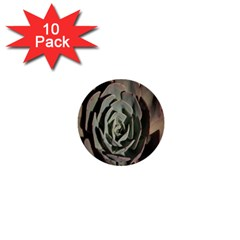 Succulent Green Pink Rosettes 1  Mini Buttons (10 Pack)  by Sapixe