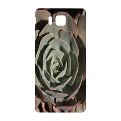 Succulent Green Pink Rosettes Samsung Galaxy Alpha Hardshell Back Case by Sapixe