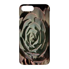 Succulent Green Pink Rosettes Apple Iphone 7 Plus Hardshell Case