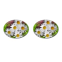 Flowers Flower Background Design Cufflinks (oval) by Sapixe