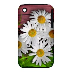Flowers Flower Background Design Iphone 3s/3gs
