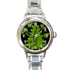Decoration Green Black Background Round Italian Charm Watch by Sapixe
